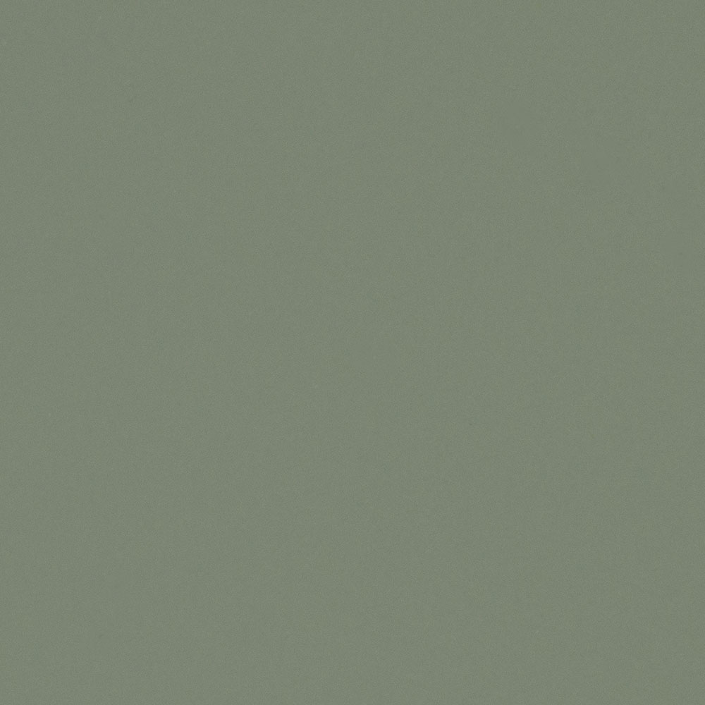 Vert gecko